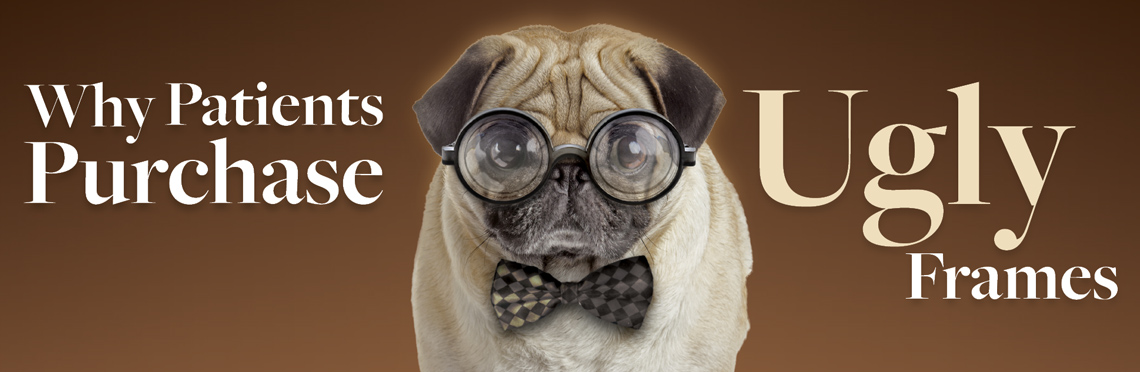 Puggle wearing ugly glasses and bowtie