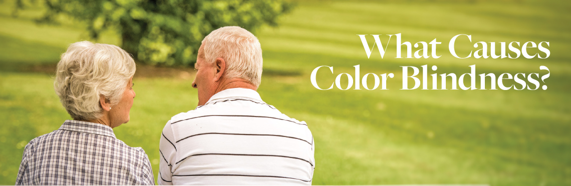 """An elderly couple sitting on a park bench with the caption """"what causes color blindness?"""""""
